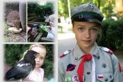 12-latka z Sadyby ratuje ptaki i jeże przed niechybną śmiercią
